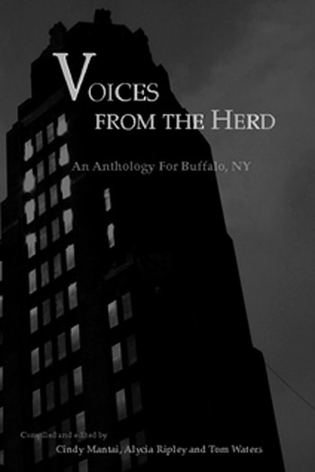 Voices From The Herd: An Anthology For Buffalo, NY - Judith Frizlen